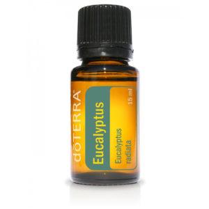 Eucalyptus Radiata_3006_www.aroma.expert_Евкалипт радиата_doTERRA_Арома.Эксперт