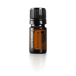 Arborvitae_49360001_www.aroma.expert_Туя_doTERRA_Арома.Эксперт